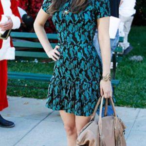 Rachel Bilson dresses (4)